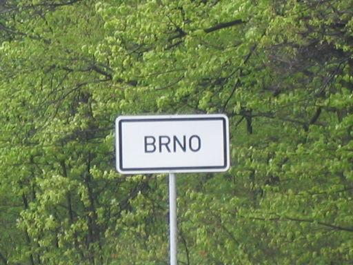 BrCon2006_sweet_53.jpg